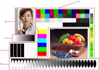 Оценка качества напечатанного на струйном принтере изображения при выборе совместимых чернил и …